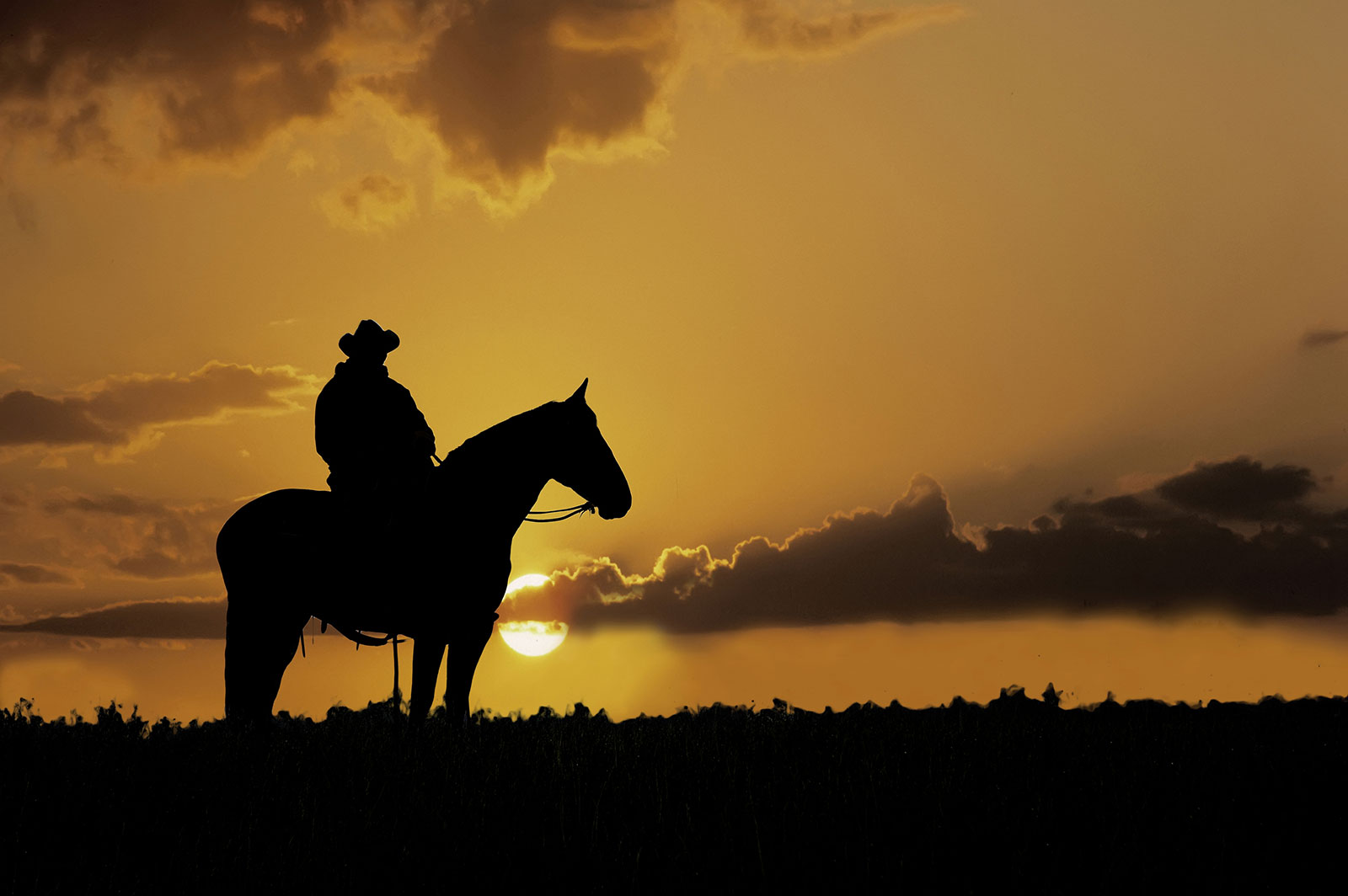 Western Horse and Rider at Sunset